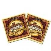 earthwood 12 string lightErnie Ball 2010 Earthwood 12 String Light Acoustic Guitar Strings 9-46 2 Pack